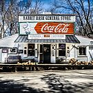 Rabbit Hash Store-Front View by mcstory