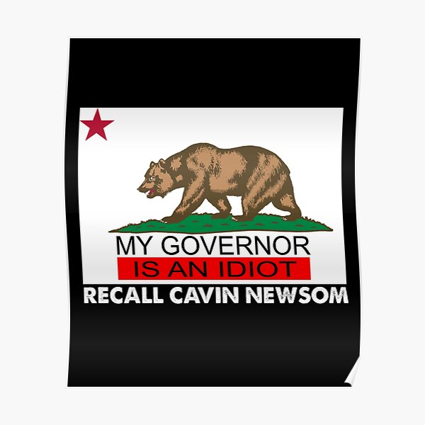 Recall Gavin Newsom California Flag Governor An Idiot Poster