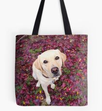 Lab in the Leaves Tote Bag