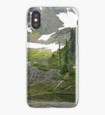 trail in heather meadows, wa, usa iPhone Case