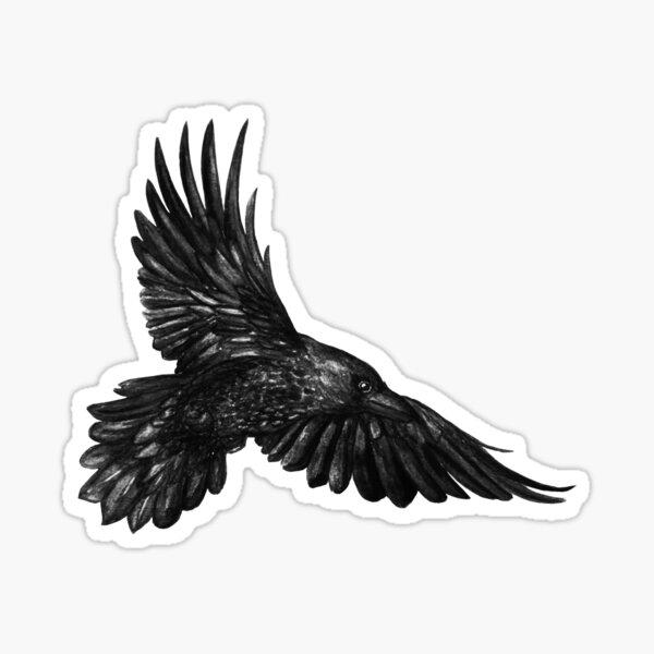 Raven in flight Sticker