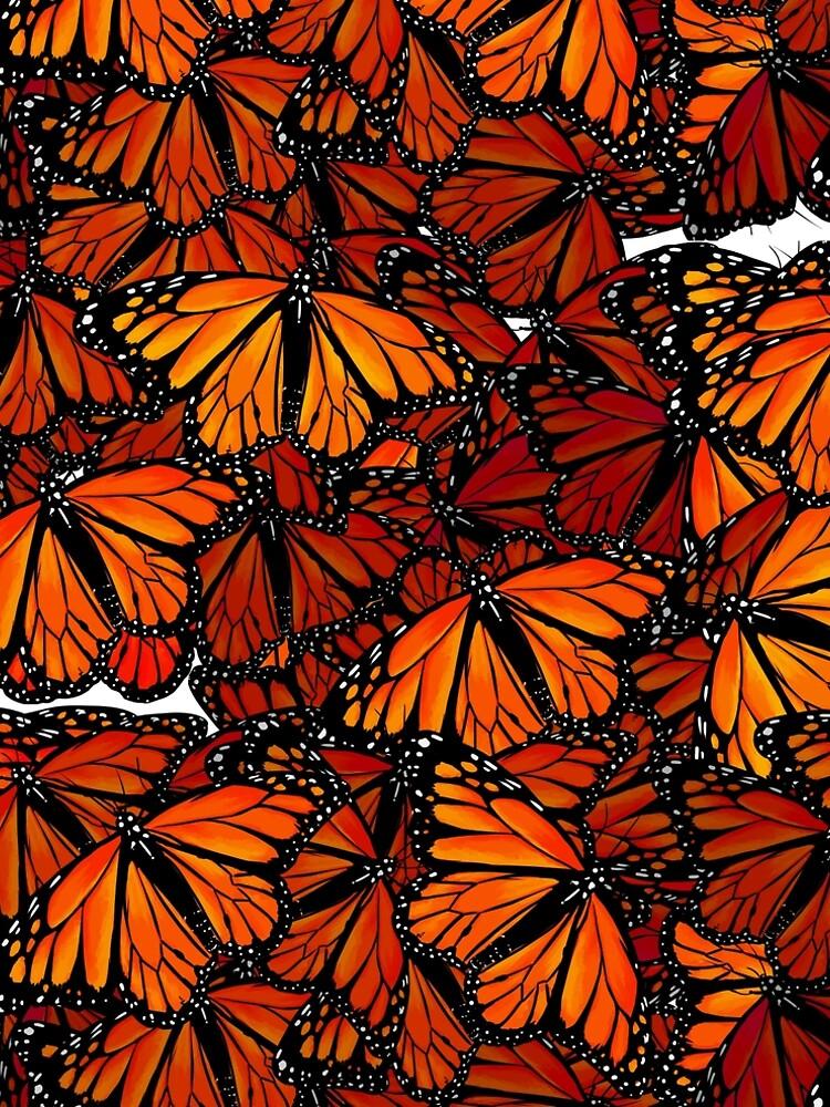 Schmetterlinge - Butterflies by ruhefuchs