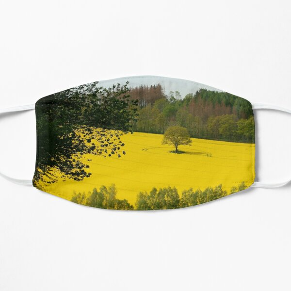 Rapeseed field in spring Mask