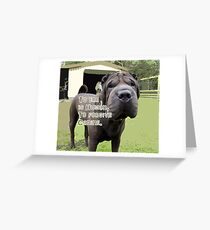 TO ERR IS HUMAN TO FORGIVE CANINE Greeting Card