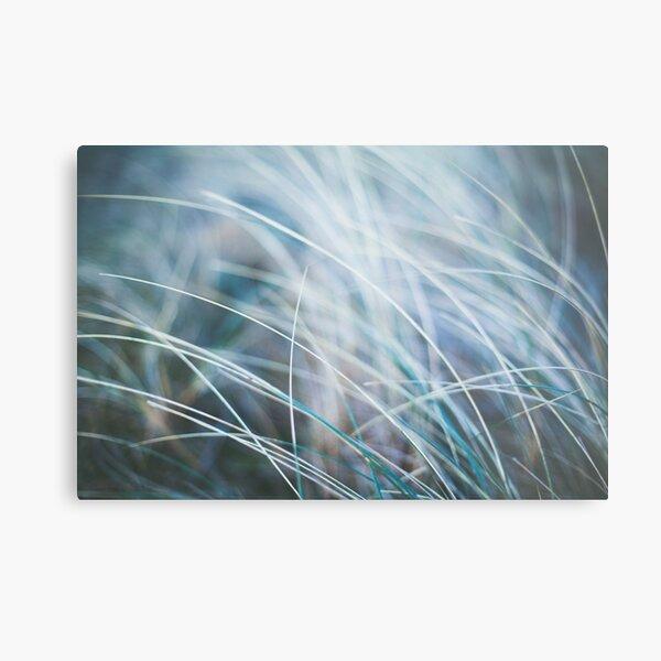 Dreamy Grass Metal Print