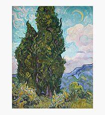 Vincent Van Gogh - Cypresses .  Van Gogh - Cypresses  Photographic Print