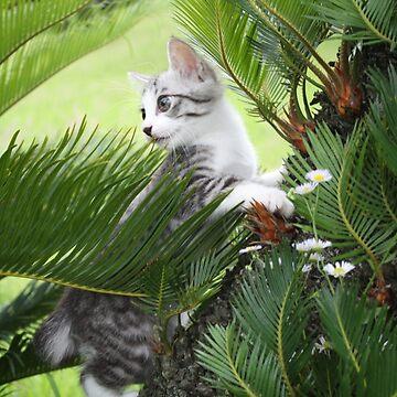 Kitten and cycad by NYANKICHILABO