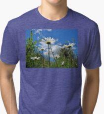 Oxeye Daisies Wildflowers - Leucanthemum vulgare Tri-blend T-Shirt