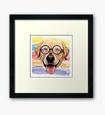 Golden Dog Framed Print