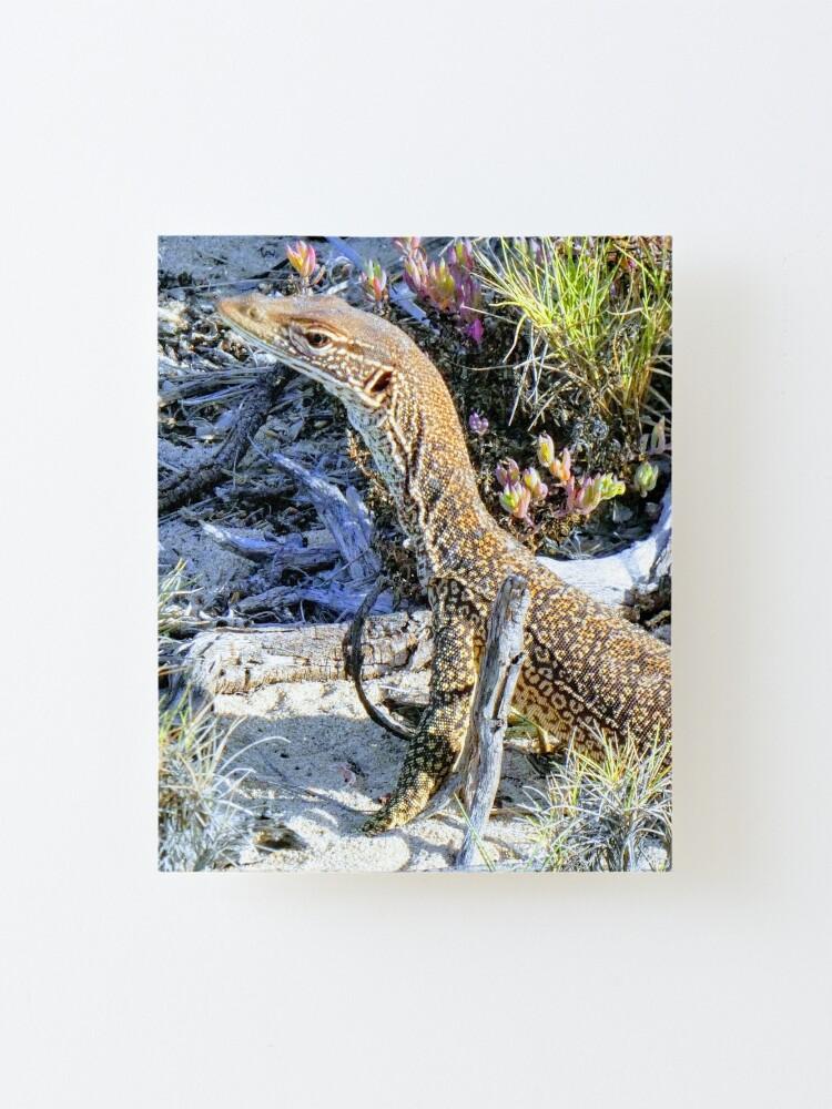 Alternate view of Perentie Australian Lizard Mounted Print