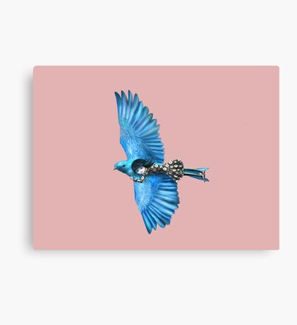 The Blue Bird Canvas Print