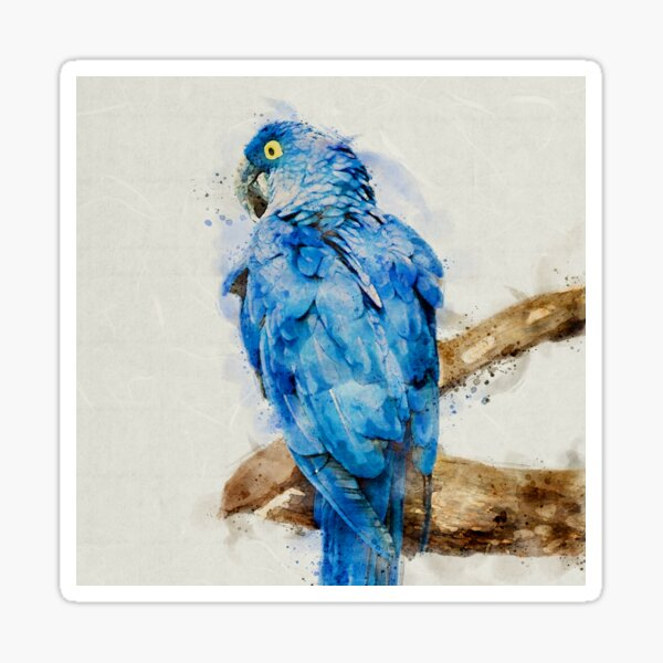 Blue Parrot Watercolor Sticker