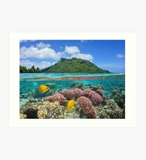 Island coral and fish underwater French Polynesia Art Print