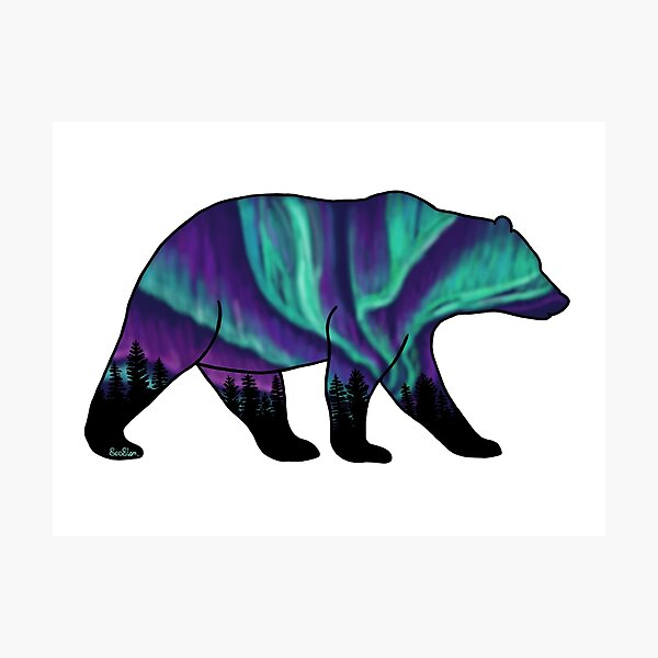 Brown Bear Silhouette - Northern Lights Photographic Print