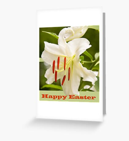 White Lily Easter Card Greeting Card