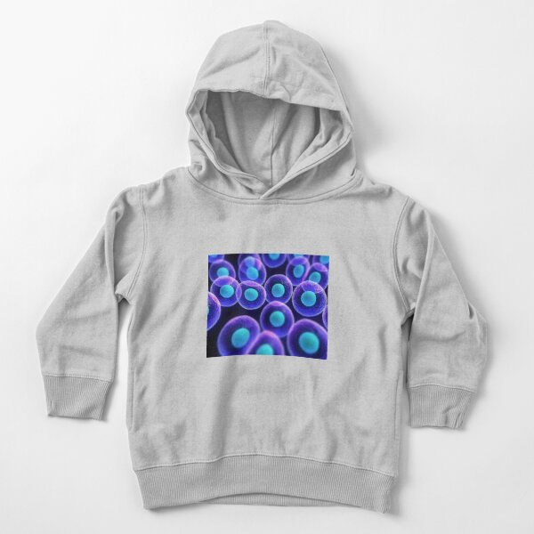 Adult stem cells are thought to be the body's natural repair system. #FactualFriday #StemCells #HeartDisease Toddler Pullover Hoodie