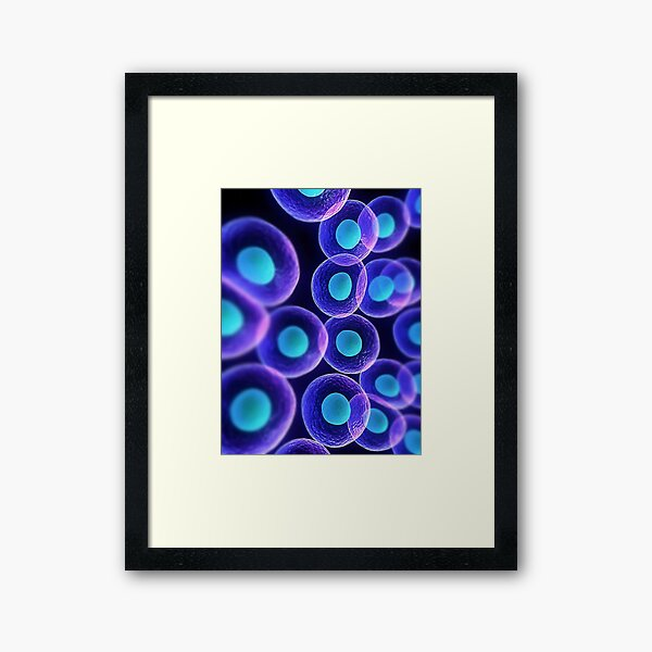 Adult stem cells are thought to be the body's natural repair system. #FactualFriday #StemCells #HeartDisease Framed Art Print