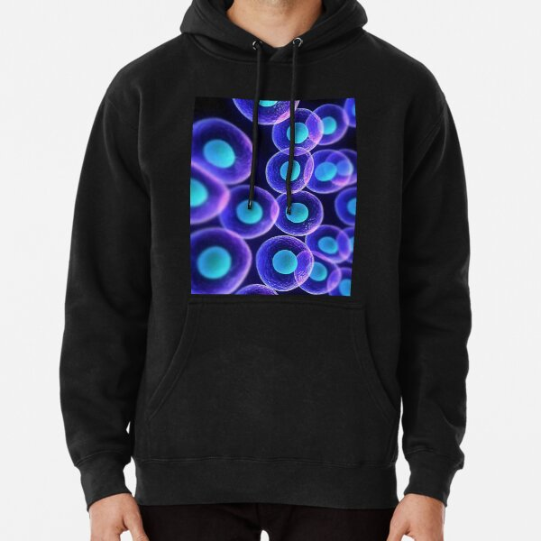 Adult stem cells are thought to be the body's natural repair system. #FactualFriday #StemCells #HeartDisease Pullover Hoodie