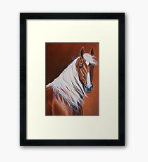 Mustang Beauty Framed Print