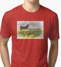 eeyore Tri-blend T-Shirt