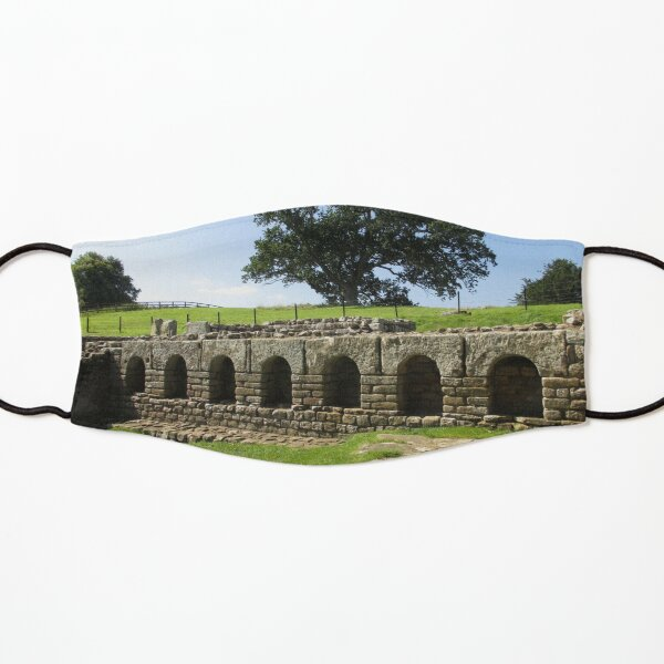 M.I. #113  ☼  The Changing Hall - Shot 2 (Hadrian's Wall) Kids Mask