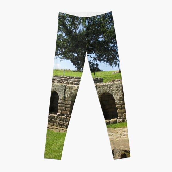 M.I. #113  ☼  The Changing Hall - Shot 2 (Hadrian's Wall) Leggings
