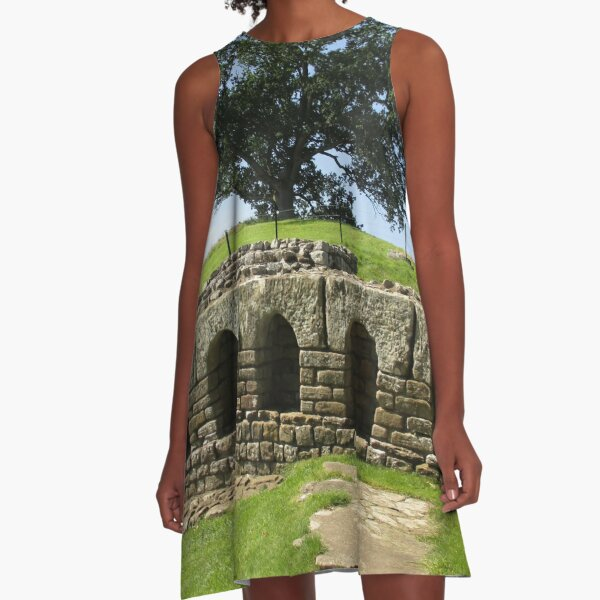 M.I. #113  ☼  The Changing Hall - Shot 2 (Hadrian's Wall) A-Line Dress