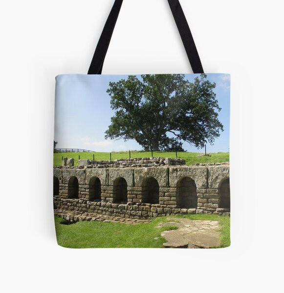 M.I. #113 |☼| The Changing Hall - Shot 2 (Hadrian's Wall) All Over Print Tote Bag