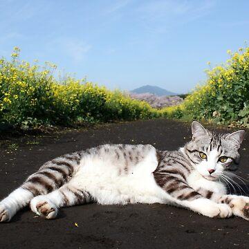 Cats and broccolini by NYANKICHILABO