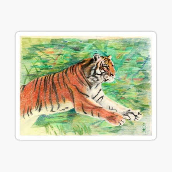 Tiger: Speed, Power, Beauty Sticker