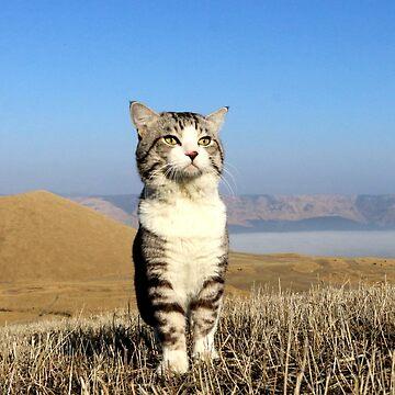 Cat god Advent ! ? by NYANKICHILABO