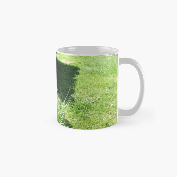 M.I. #114  ☼  Ground Rock Perspective (Hadrian's Wall) Classic Mug