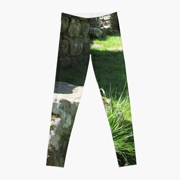 M.I. #114  ☼  Ground Rock Perspective (Hadrian's Wall) Leggings