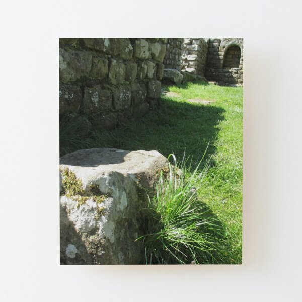 M.I. #114  ☼  Ground Rock Perspective (Hadrian's Wall) Wood Mounted Print