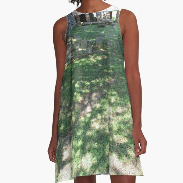 M.I. #116  ☼  Speckle Shadows (Hadrian's Wall) A-Line Dress