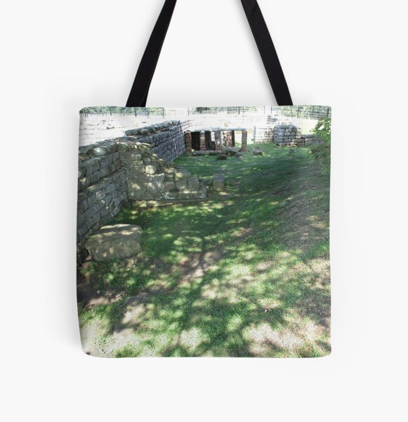 M.I. #116 |☼| Speckle Shadows (Hadrian's Wall) All Over Print Tote Bag