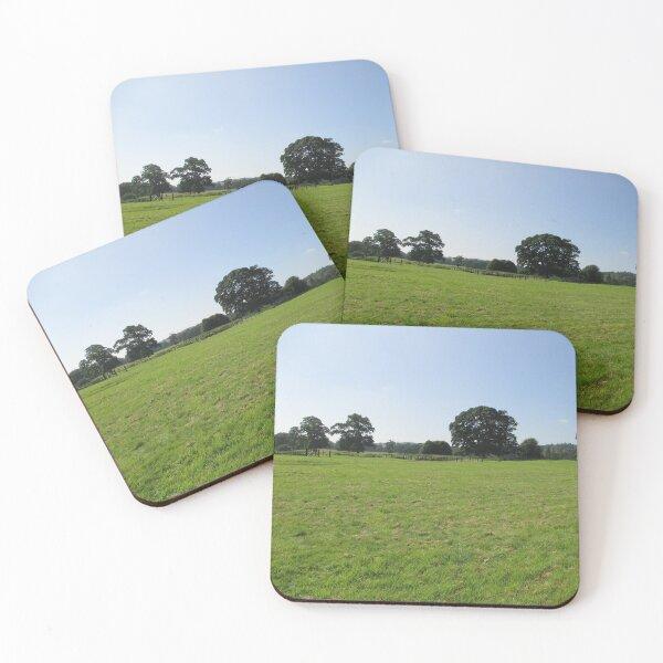 M.I. #117  ☼  Distant Love Heart Pareidolia Trees (Hadrian's Wall) Coasters (Set of 4)