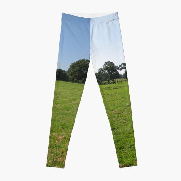 M.I. #117  ☼  Distant Love Heart Pareidolia Trees (Hadrian's Wall) Leggings