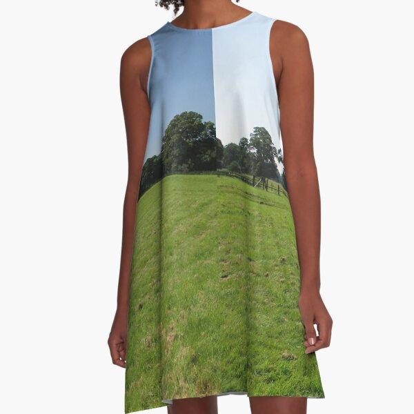 M.I. #117  ☼  Distant Love Heart Pareidolia Trees (Hadrian's Wall) A-Line Dress