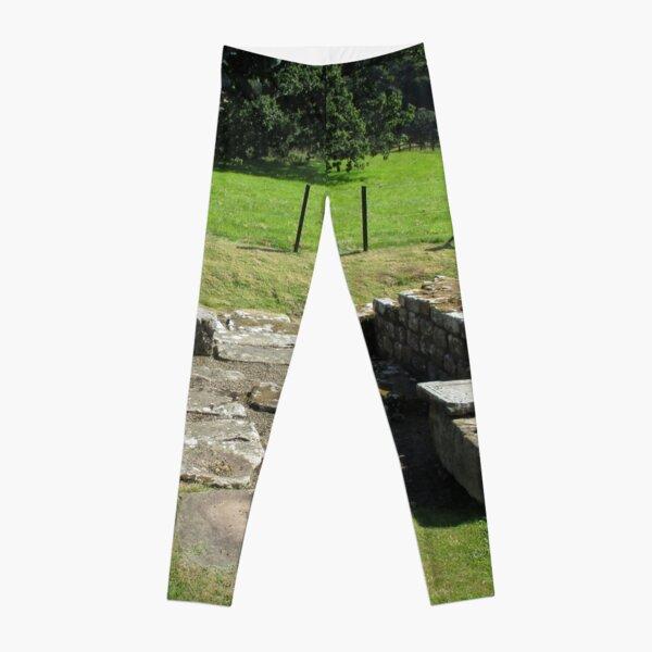 M.I. #118  ☼  Abundant Trees Beyond Rocky Remains - Shot 1 (Hadrian's Wall) Leggings