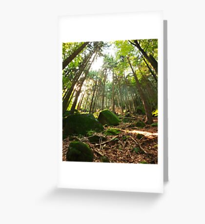 Table Mountains Greeting Card