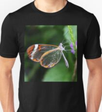 Wings Of Glass T-Shirt