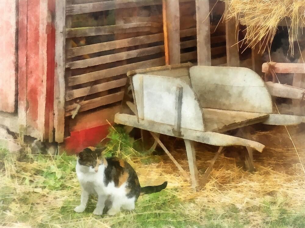 Farm Cat by Susan Savad