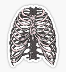 Ribs 5 Sticker
