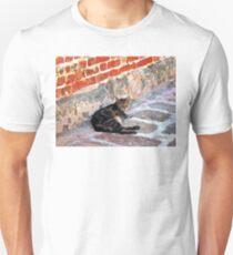 Cat Against Stone T-Shirt
