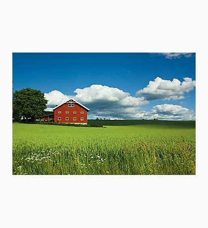 Stange neighbourhood Photographic Print