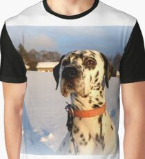 Julius in the winter sun Graphic T-Shirt