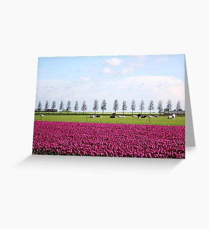 Holland in Spring Greeting Card