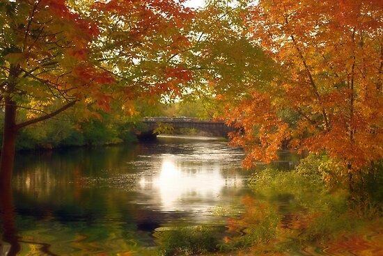 Fall Afternoon by LudaNayvelt