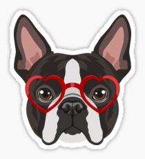 Pegatina Boston Terrier Dog Hipster Glasses